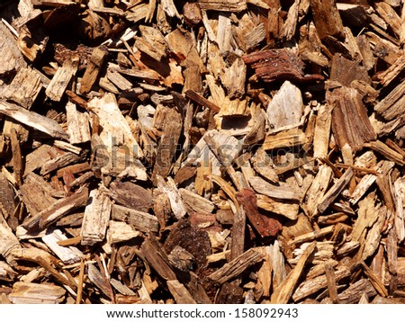 bark mulch - stock photo