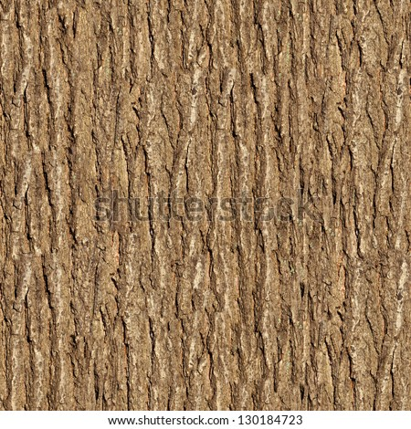 Bark of Elm. Seamless Tileable Texture. - stock photo