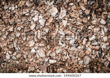 Bark of tree used for mulching. Closeup texture - stock photo