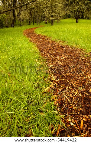 Bark path from a grass field leading to a grove of trees. Shallow depth of field, focus at immediate foreground. - stock photo