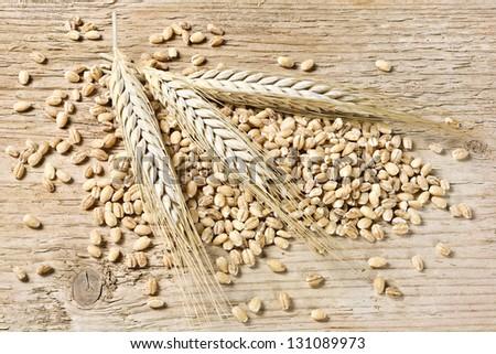 Barley, Ears And Grain - stock photo