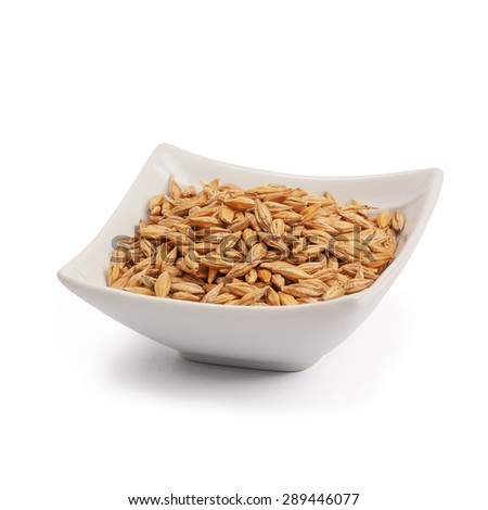 barley grain seed close up isolated on white background - stock photo