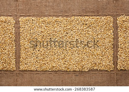 Barley grains on sackcloth, with place for your text, drawing - stock photo