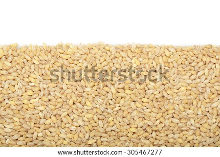 Barley grits for background and texture. Barley cereal. Top view. - stock photo