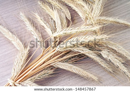 Barley on wooden underground / agriculture - stock photo