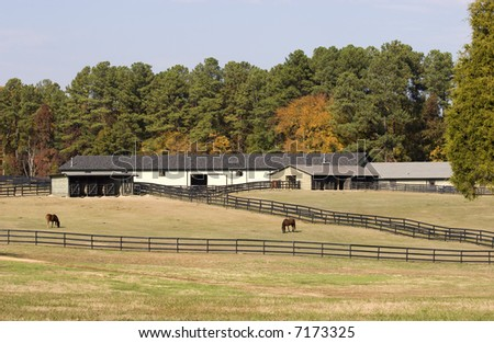 Barns and Horses - stock photo
