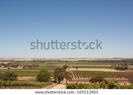 Barossa - stock photo