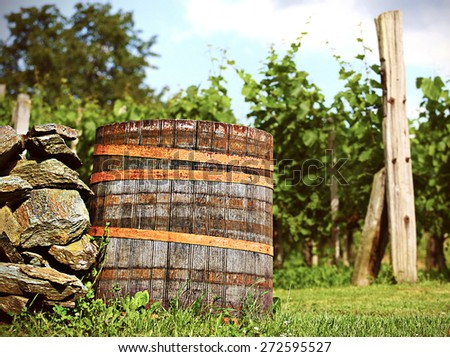 barrel in wineyard in the sunset with blurry background and stones - stock photo
