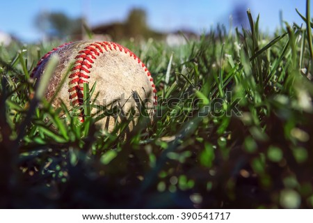 Baseball lying in the deep grass of the outfield - stock photo