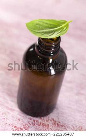 Basil organic essential oil  aromatherapy and culinary - stock photo