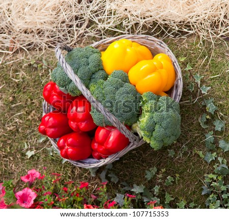 Basket and vegetables - stock photo