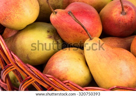 Basket full of fresh pears photographed close up - stock photo