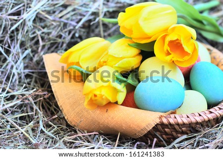 Basket of colored easter eggs and tulips on hay - stock photo