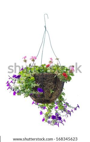 basket of flowers isolated on white background - stock photo