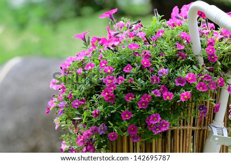 Basket of flowers on the Bicycle - stock photo