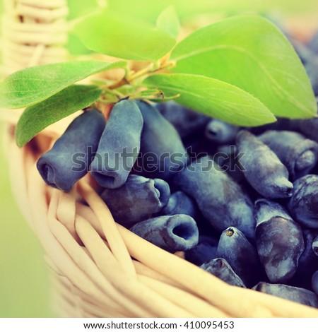 Basket of fresh ripe honeysuckle berries, selective focus, toned - stock photo