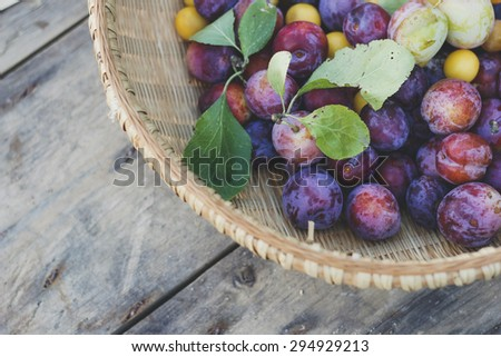 Basket of freshly picked organic plums - stock photo