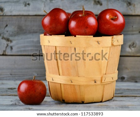 Basket of freshly picked red apples - stock photo