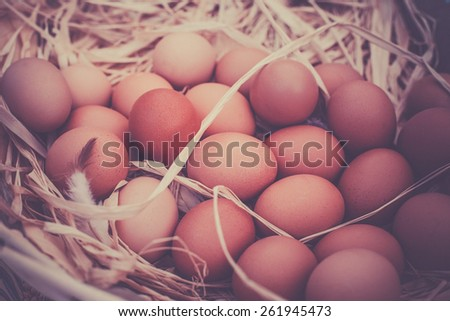 Basket of organic eggs in a rural farmers market. Filtered shot with a selective focus - stock photo
