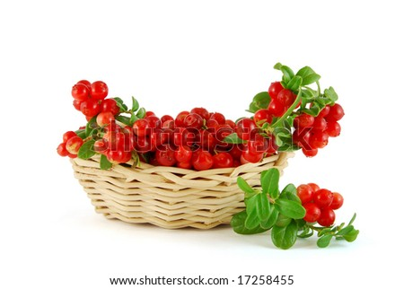 Basket of the berries on the white background - stock photo