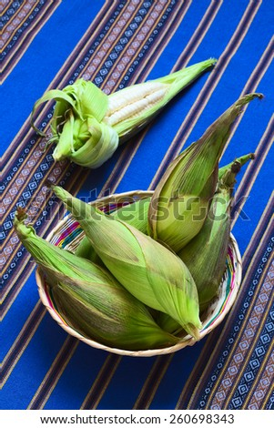 Basket of white corn cobs called Choclo (Spanish), in English Peruvian or Cuzco corn, typically found in Peru and Bolivia, photographed with natural light (Selective Focus, Focus on the upper cobs)    - stock photo