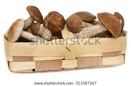 Basket of wild mushrooms isolated on white background. Wild Foraged Mushroom selection - stock photo