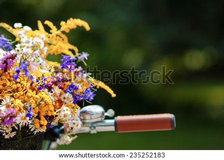 Basket with daisies and other flowers in sunny day - stock photo