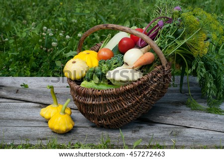Basket with harvest on the gray wooden plank. Young carrots, beets, onions, colorful courgettes, cucumbers, tomatoes and other vegetables and herbs. Vegan concept. Summer season - stock photo