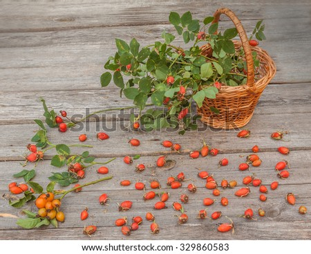 Basket with hips on a wooden table - stock photo