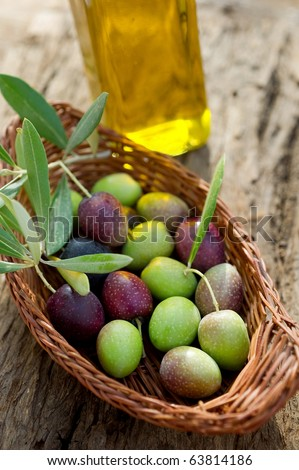 basket with olive branch and oil - stock photo