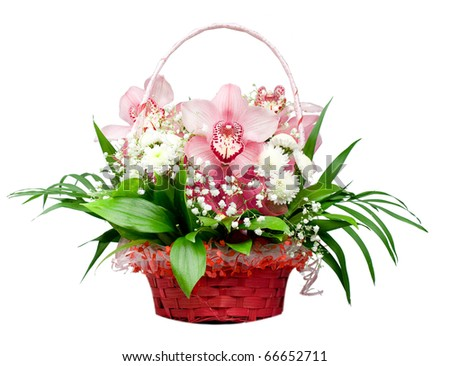 Basket with orchids - stock photo