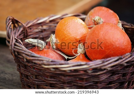 Basket with pumpkins at farmer's market - stock photo