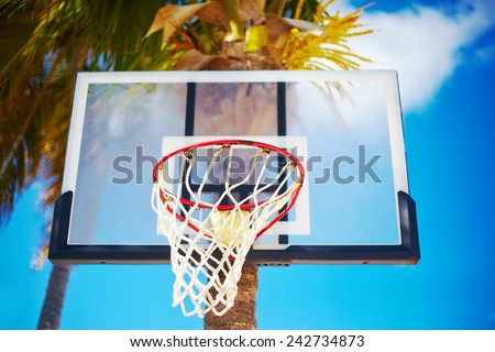 Basketball board ring on summer day on blue sky and green tree palm background - stock photo