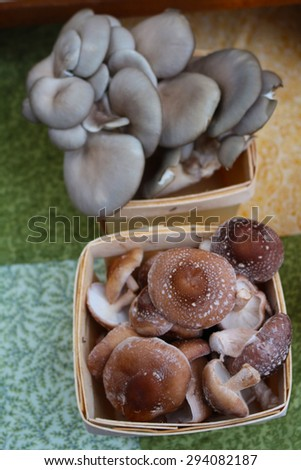 Baskets full of assorted types of mushrooms - stock photo
