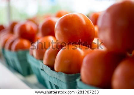 Baskets of tomatoes all in a row at the local farmer's market. - stock photo