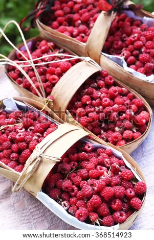 baskets with ripe red raspberries on the summer garden background - stock photo
