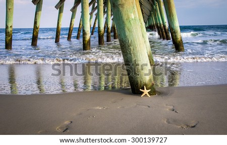 Basking In The Sun. A starfish basks in the sun on the sunny shore of Myrtle Beach, South Carolina. Myrtle Beach is a popular tourist destination on the Atlantic Ocean. - stock photo