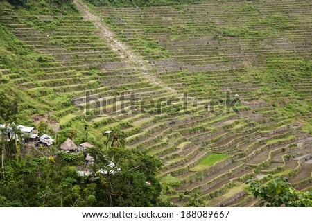 Batad Rice Terraces - Philippines - stock photo
