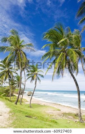 Bathsheba, Eastern coast of Barbados, Caribbean - stock photo