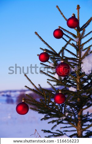 baubles  on a Christmas tree outside in a snowy landscape - stock photo