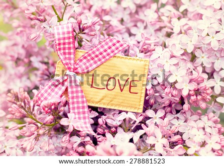 bautiful blossom flower greeting card background - love - stock photo