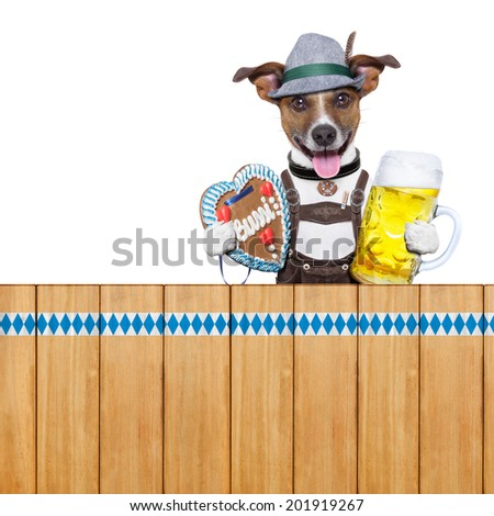 bavarian dog above a wooden fence holding beer mug and gingerbread heart - stock photo