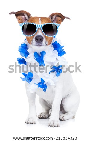 bavarian funny dog with sunglasses and flower chain - stock photo