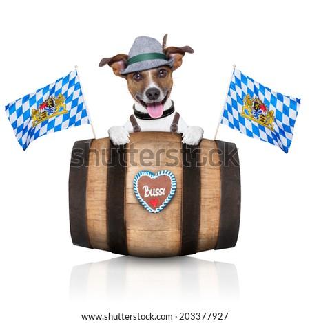 bavarian german dog behind beer barrel and  bavarian flags - stock photo