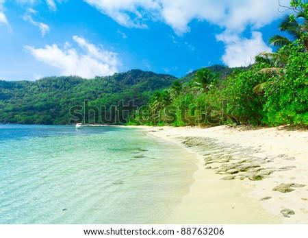 Bay Summertime Palms - stock photo