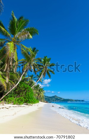Bay Tranquility Jungle - stock photo
