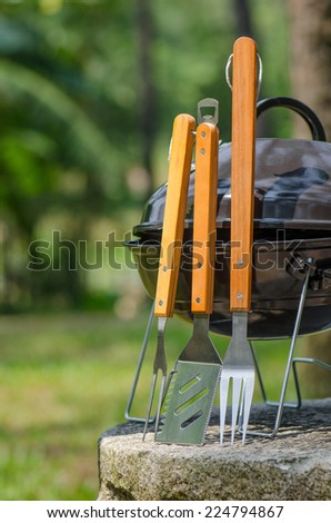 Bbq Grill On The Park field  - stock photo