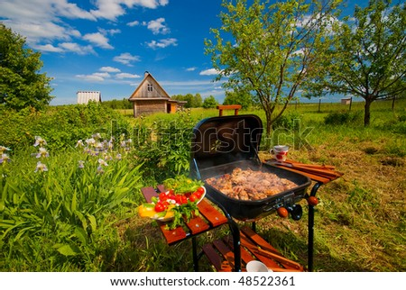 BBQ in the garden on clear summer day - stock photo