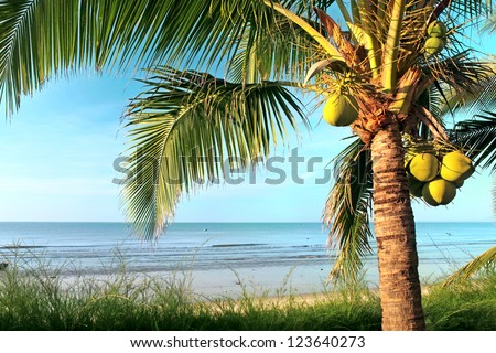 Beaautiful beach with coconut palm and sea - stock photo