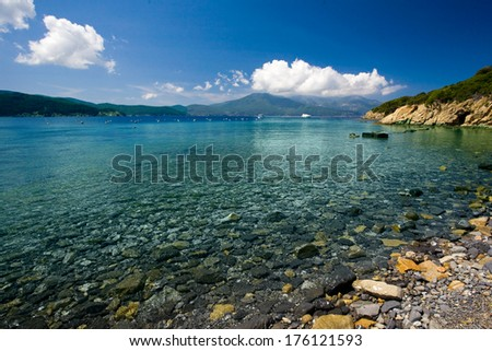 beach and blue sea in Elba Island - stock photo